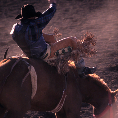 Live Event Spotlight: Entertainer Lineup for Houston Rodeo 2014