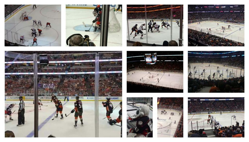 f2d50b300ca One of the expansion teams of the anaheim ducks have come up big throughout  their time