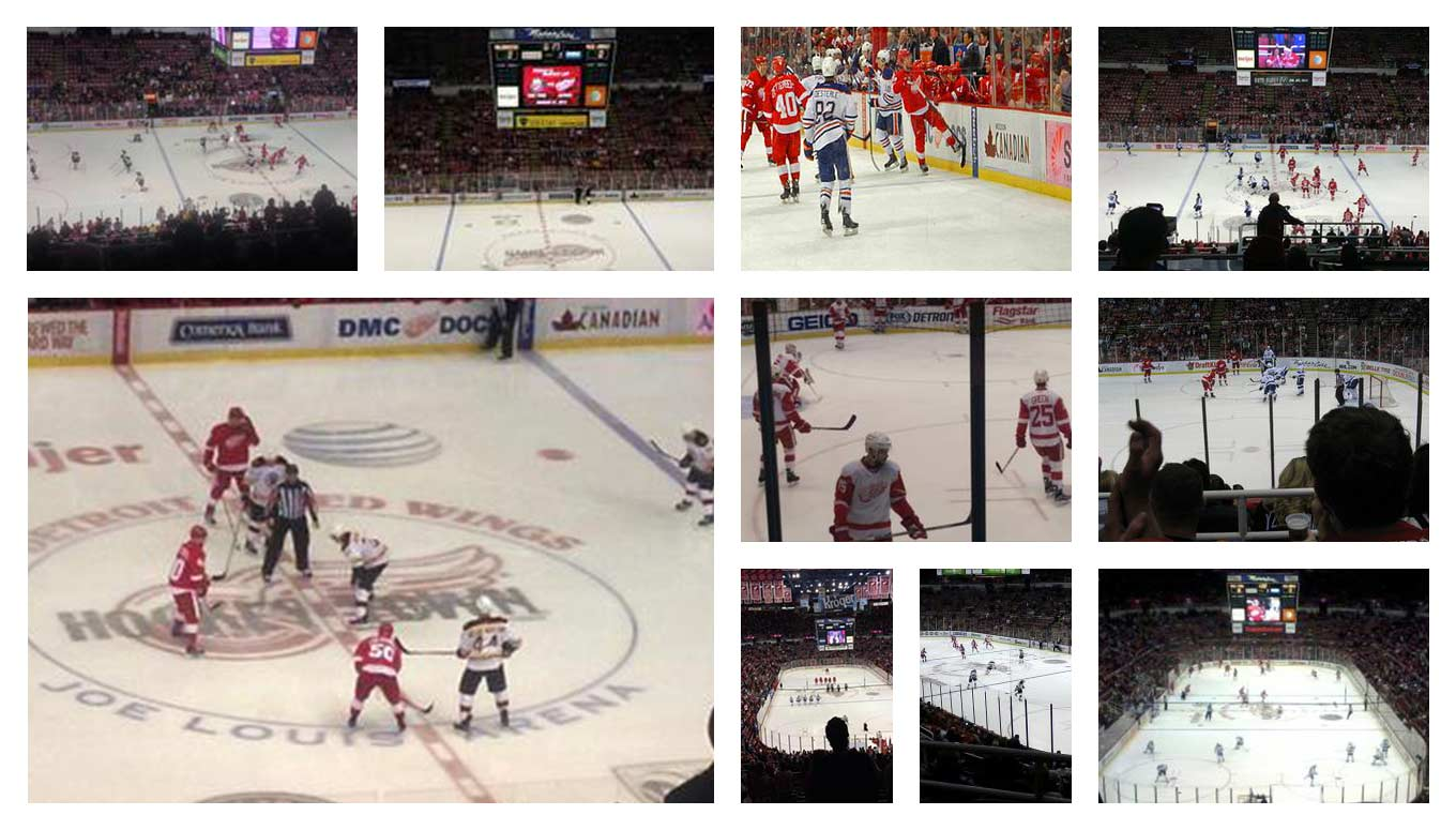 Welcome to Hockeytown: The Fandom surrounding the Detroit Red Wings